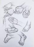 Чертеж руки. эскиз бесплатная иллюстрация
