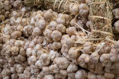 Чесноки, материал еды и варить для стиля еды Азии Стоковое фото RF