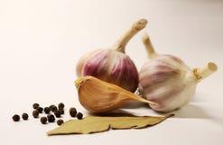 Чеснок Головы чеснока Cloves чеснока Лист залива Горохи черного перца специя овощ Полезный овощ Стоковые Фотографии RF