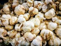 чеснок органический Стоковые Фото