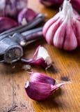 Чеснок свежий чеснок Красный чеснок Пресса чеснока Фиолетовый чеснок серия чеснока еды предпосылки чеснок шариков свежий возглавл Стоковое Изображение
