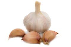 чеснок, чеснок малый, макрос чеснока, gralic естественное, белизна garilc, g Стоковые Фото