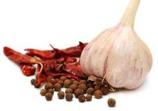 чеснок шарика предпосылки spices белизна Стоковая Фотография RF