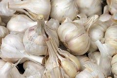 чеснок cloves Стоковая Фотография RF