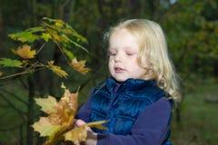 Четырехклассная девушка играя с листьями осени Стоковая Фотография RF
