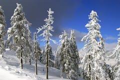 чехословакская зима Стоковые Фотографии RF