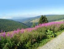Чехословакский национальный парк Krkonose Стоковая Фотография