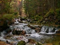 Чехословакск-река Эльба Стоковое Фото