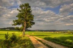 Чехословакская сельская местность Стоковые Изображения