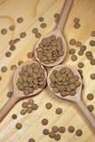 Чечевицы в деревянных ложках Стоковое Изображение