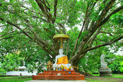 Челка Khen Wat Phra Si Mahathat стоковые изображения rf