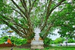Челка Khen Wat Phra Si Mahathat стоковая фотография rf