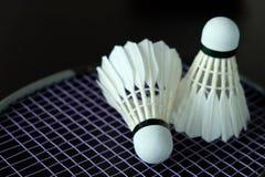 Челнок бадминтона Стоковое Изображение RF