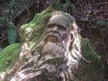 Человек аборигена Стоковые Фото