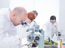 Человек анализируя под микроскопом Стоковая Фотография RF