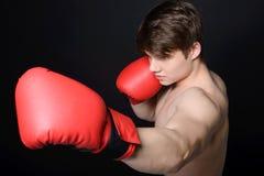 Человек боксера Стоковое Фото