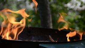Человек бросает древесину в огонь на гриле барбекю в саде на временени акции видеоматериалы