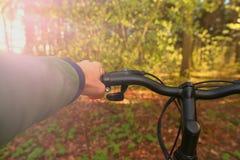 Человек весны ехать велосипед в древесинах outdoors закрывает вверх Стоковая Фотография
