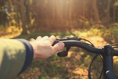 Человек весны ехать велосипед в древесинах outdoors закрывает вверх Стоковое Изображение