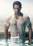 Человек в бассейне стоковые изображения rf