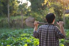 Человек в поле земледелия, люди земледелия земледелия Стоковое фото RF