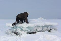 Человек в серой крышке двигая вдоль блока льда на реке Стоковое фото RF