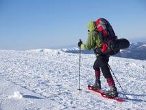 Человек в snowshoes в горах Стоковое фото RF
