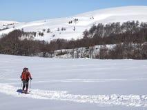 Человек в snowshoes снег Стоковые Изображения