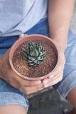 Человек держа бак кактуса Стоковые Фотографии RF