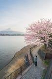 Человек делает фотографию на горе Фудзи около дерева Сакуры Стоковое Изображение