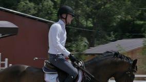 Человек едет на лошади на арене видеоматериал