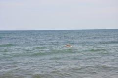 Человек заплывания в океане Стоковое Фото