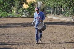 Человек засаживая траву в Турине Стоковое Фото