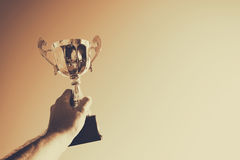 Человек задерживая чашку трофея как победитель против голубого неба стоковые фотографии rf