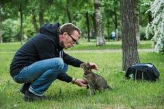 Человек играя кота внешнего Стоковые Фотографии RF