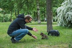 Человек играя кота внешнего стоковая фотография rf