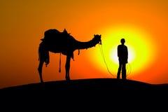 Человек и верблюд силуэта на заходе солнца. Индия. Стоковая Фотография