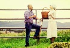 Человек и женщина беседуя и наслаждаясь молоко Стоковые Изображения