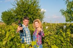 Человек и женщина в винограднике Стоковые Фото