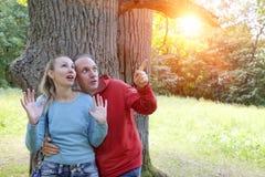 Человек и женщина около дуба в летнем дне видели что-то выше на ветви Стоковое Фото