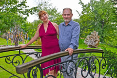 Человек и женщина стоят на декоративном мосте в парке Стоковое Изображение