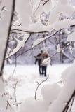 Человек и женщина людей ландшафта 2 предпосылки идут через снежные древесины в зиме Стоковые Изображения RF