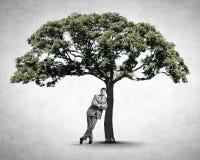 Человек и зеленое дерево стоковые фото