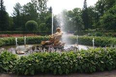 Человек и рыбы фонтана Стоковое Изображение