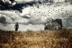 Человек идя в поле Стоковое фото RF