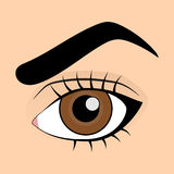 человек коричневого глаза ложный хлещет вкладыш Стоковые Изображения