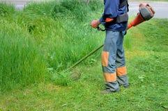 Человек косит траву Стоковое фото RF