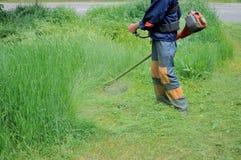 Человек косит траву Стоковые Изображения RF