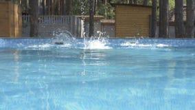 Человек купает в бассейне акции видеоматериалы