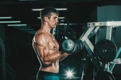 Человек мышцы делая скручиваемости бицепса Стоковое Изображение